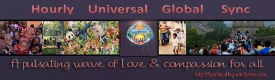 H.U.G.S.banner