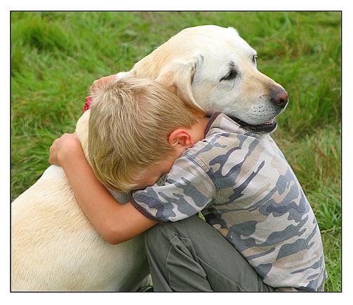hug-dog[1]
