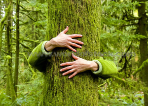 hugging-tree[1]