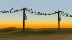 gr33bl3r_birds-on-a-wire[1]