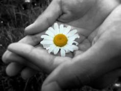 Generosity[1]