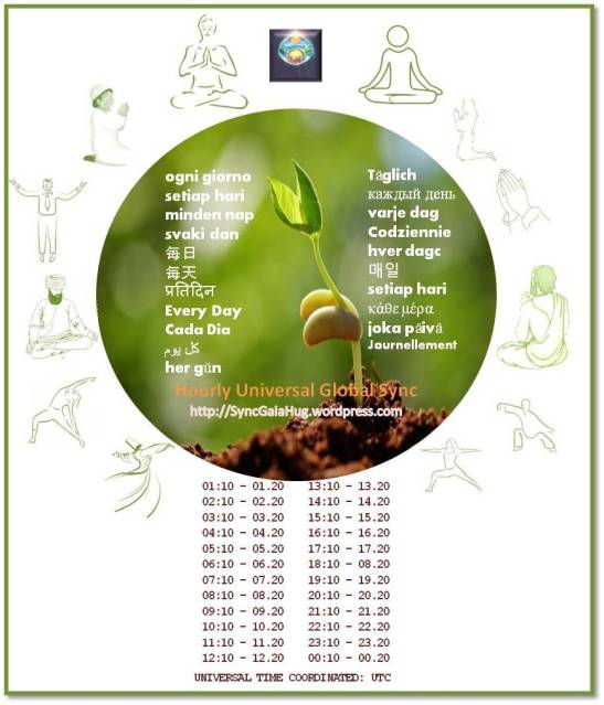 Every day choose an activity to synchronize with Mother Earth and all beings in peace and harmony