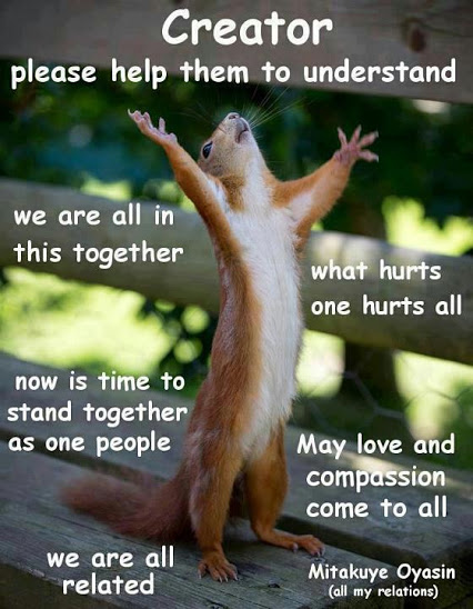 mitakuye oyasin squirrel
