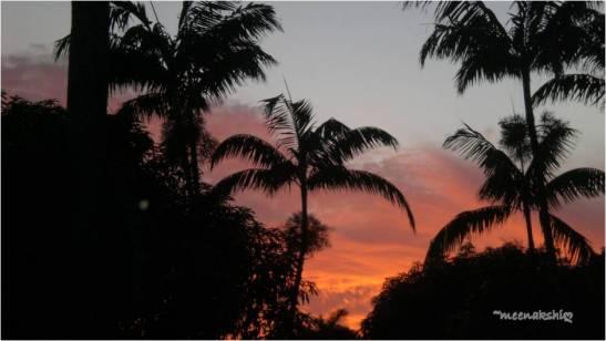 sunset dec 24 2012