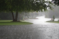 rain2-8-6-2011-3-06-30-pm