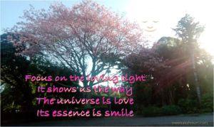 lovinglight smile